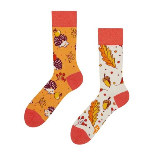 Good Mood | Adult Regular Socks | Autumn Hedgehog